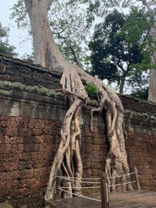los templos de angkor 6